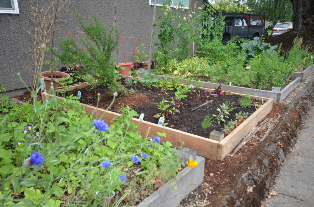 Raised beds available